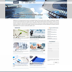 M&F - Management & financial services